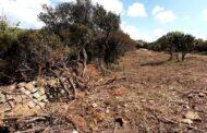 Valle de Marangone, dalla Regione stop ai lavori dell'Agraria e nuovo sopralluogo