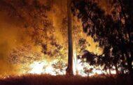 Ancora un incendio a Sant'Agostino