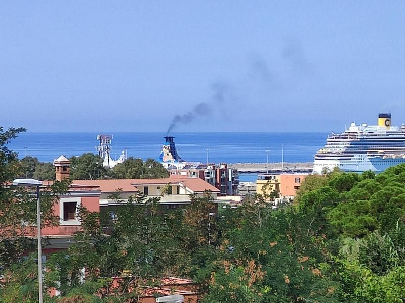 Fumo navi, l'assessore Magliani: